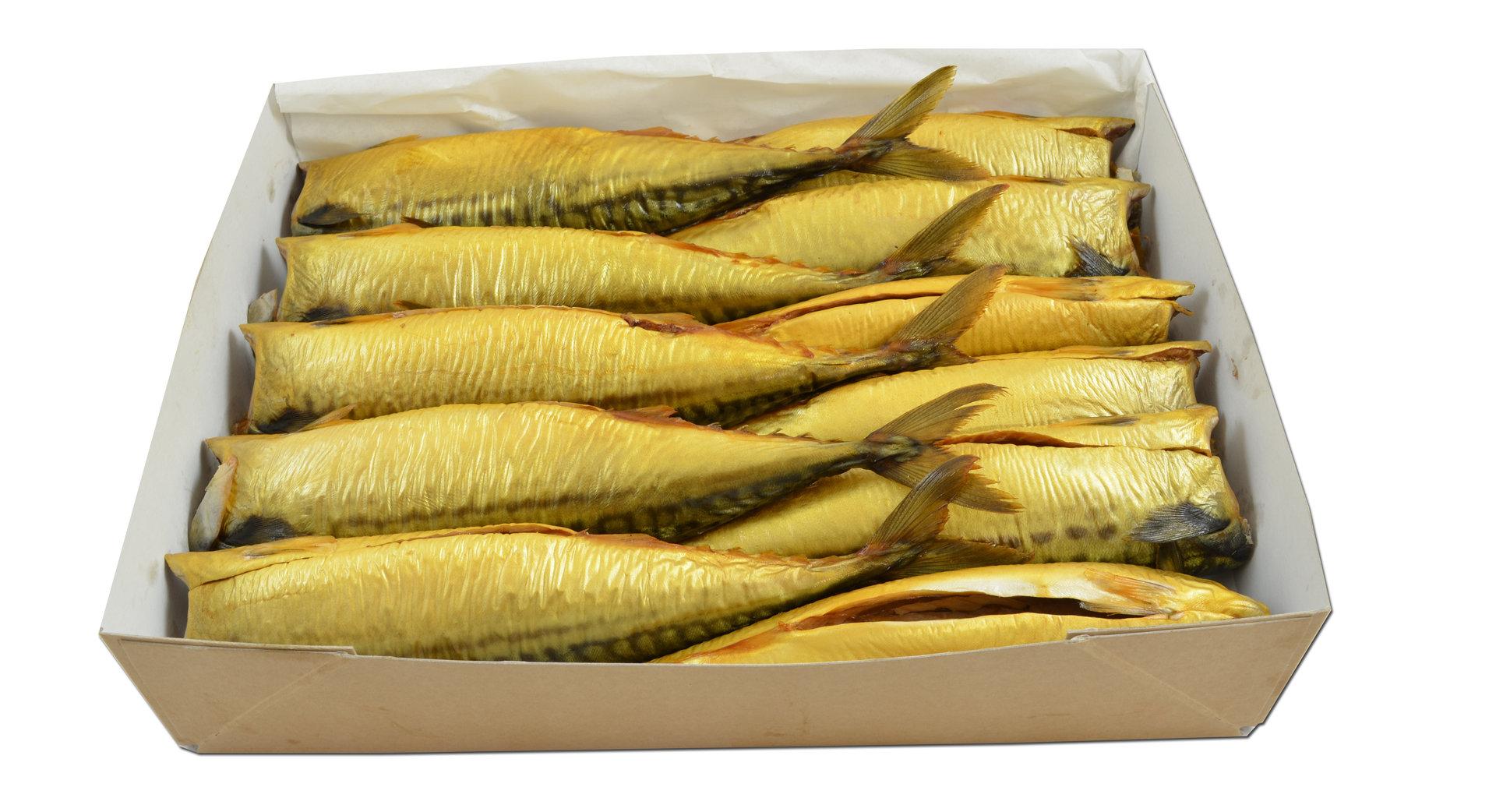 Makrelen ohne Kopf - L